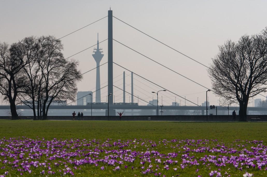 Der Frühling ist da – ein Kurztrip durch Düsseldorf